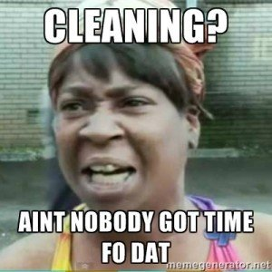 Aint no body got time fo dat cleaning meme